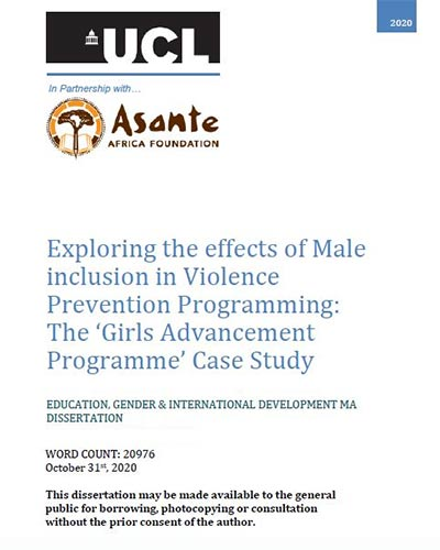 dissertation-exploring-effects-male-inclusion