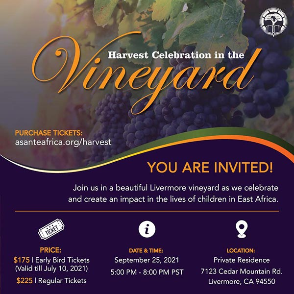 Harvest Celebration in the Vineyard